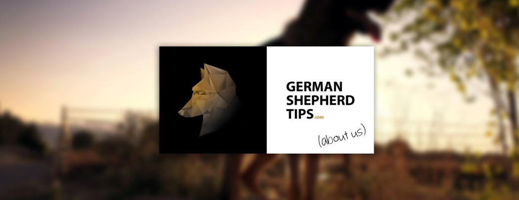 http://germanshepherdtips.com/wp-content/uploads/2015/10/about-us-1050x405.jpg