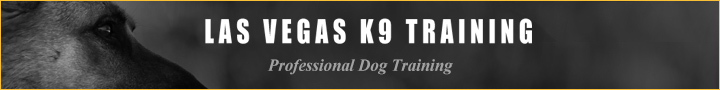 Las Vegas K9 Training | Professional Dog Training